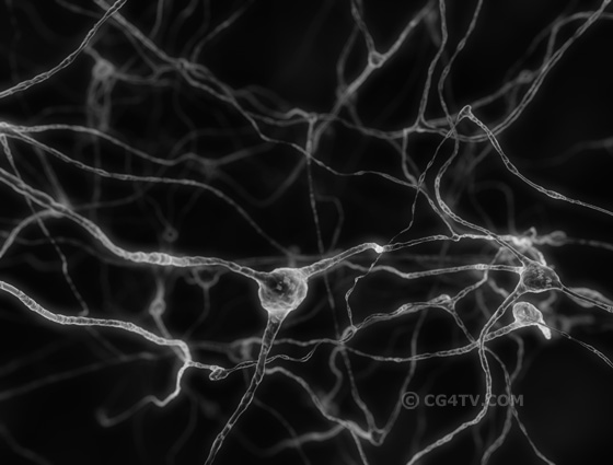 Salsa Neurons